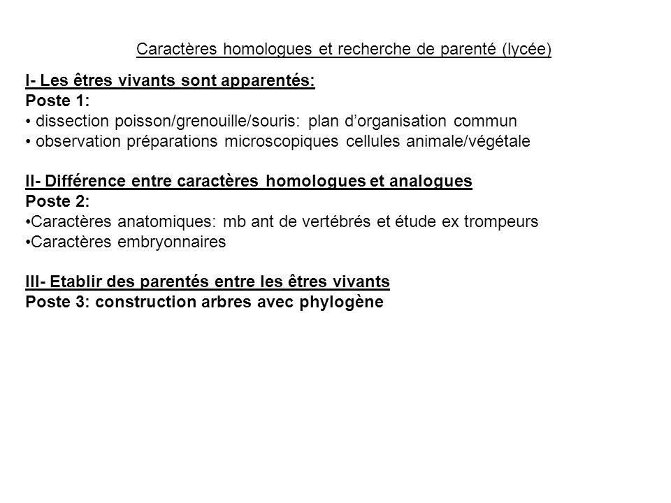 Caractères homologues et recherche de parenté (lycée) I- Les êtres vivants sont apparentés: Poste 1: dissection poisson/grenouille/souris: plan dorgan