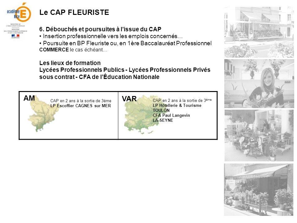 Le CAP FLEURISTE 6. Débouchés et poursuites à lissue du CAP Insertion professionnelle vers les emplois concernés… Poursuite en BP Fleuriste ou, en 1èr