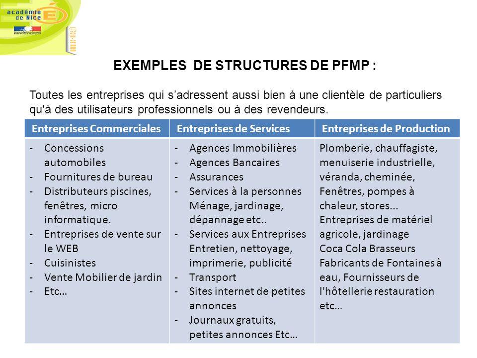 EXEMPLES DE STRUCTURES DE PFMP : Toutes les entreprises qui sadressent aussi bien à une clientèle de particuliers qu'à des utilisateurs professionnels