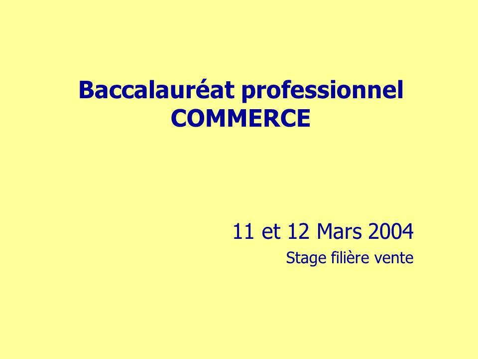 Baccalauréat professionnel COMMERCE 11 et 12 Mars 2004 Stage filière vente