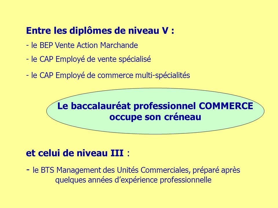 Entre les diplômes de niveau V : - le BEP Vente Action Marchande - le CAP Employé de vente spécialisé - le CAP Employé de commerce multi-spécialités et celui de niveau III : - le BTS Management des Unités Commerciales, préparé après quelques années dexpérience professionnelle Le baccalauréat professionnel COMMERCE occupe son créneau