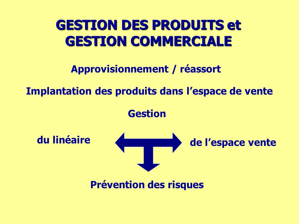 GESTION DES PRODUITS et GESTION COMMERCIALE Approvisionnement / réassort Implantation des produits dans lespace de vente Prévention des risques de les