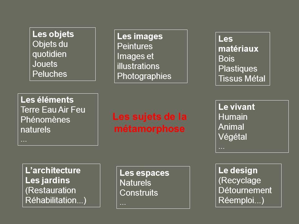 Les sujets de la métamorphose Les objets Objets du quotidien Jouets Peluches Les images Peintures Images et illustrations Photographies Les matériaux