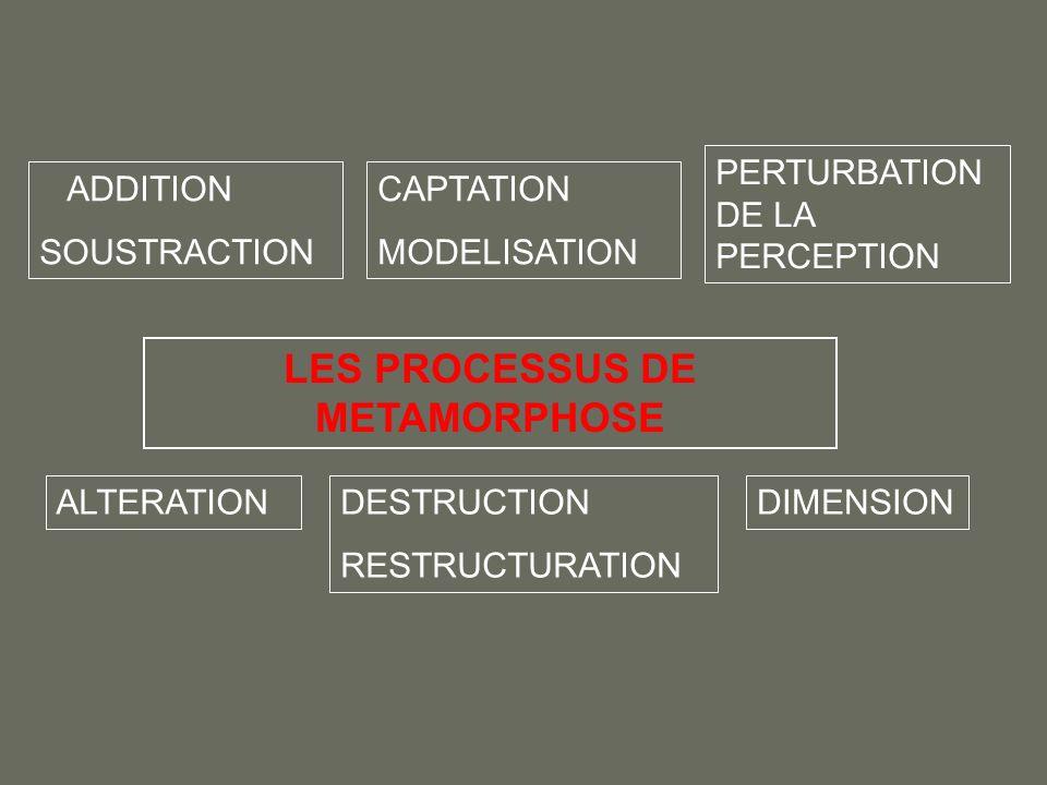 LES PROCESSUS DE METAMORPHOSE ADDITION SOUSTRACTION CAPTATION MODELISATION PERTURBATION DE LA PERCEPTION ALTERATIONDESTRUCTION RESTRUCTURATION DIMENSI