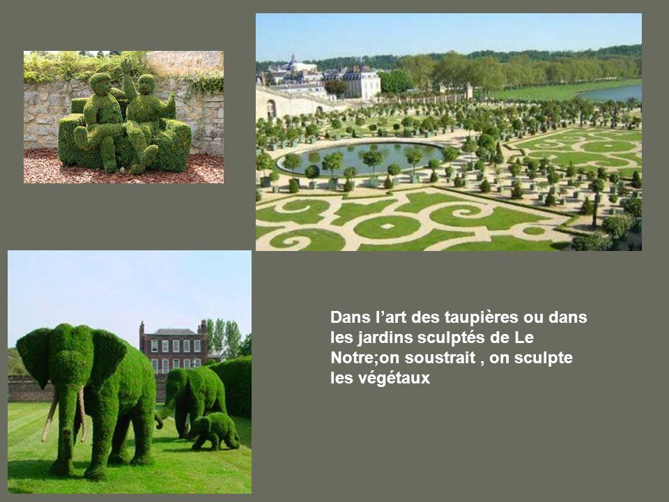 Dans lart des taupières ou dans les jardins sculptés de Le Notre;on soustrait, on sculpte les végétaux