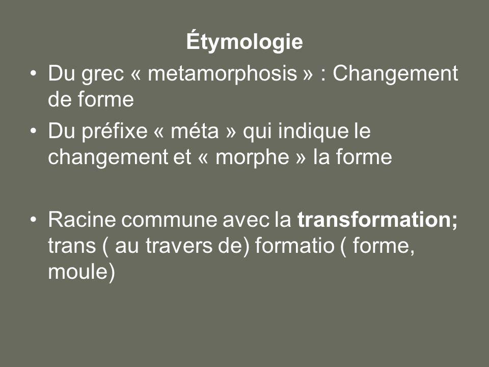 Étymologie Du grec « metamorphosis » : Changement de forme Du préfixe « méta » qui indique le changement et « morphe » la forme Racine commune avec la