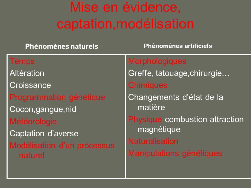 Mise en évidence, captation,modélisation Temps Altération Croissance Programmation génétique Cocon,gangue,nid Météorologie Captation daverse Modélisat