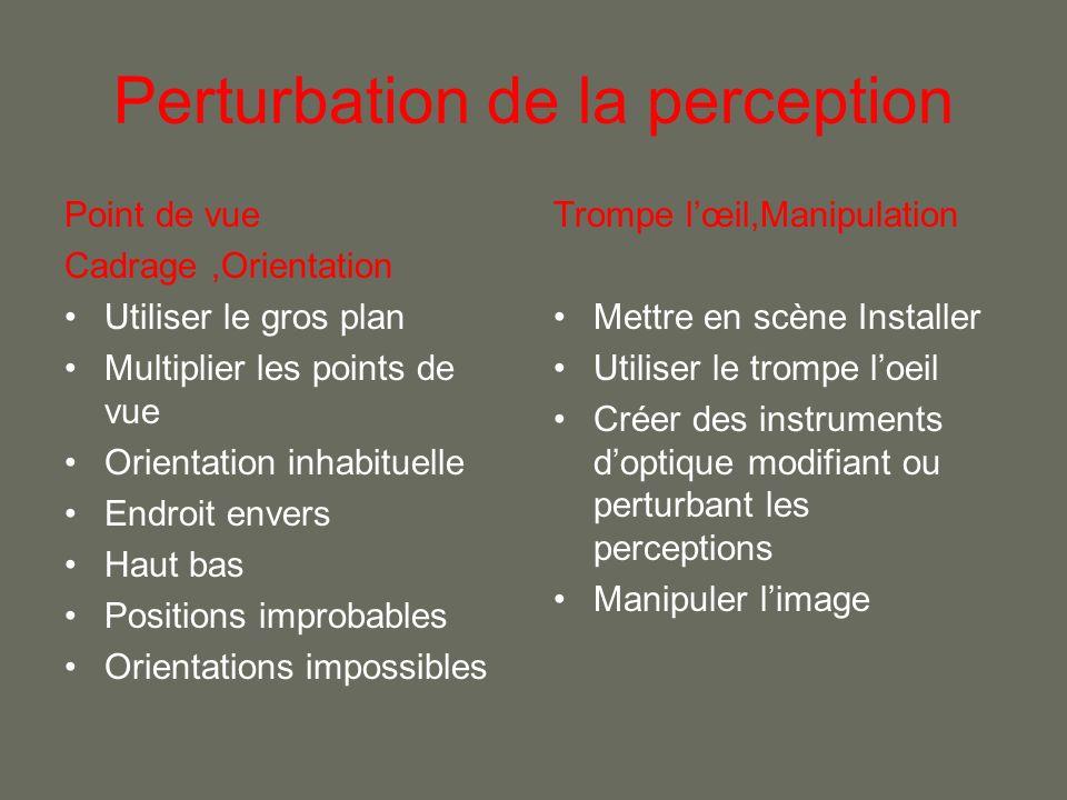 Perturbation de la perception Point de vue Cadrage,Orientation Utiliser le gros plan Multiplier les points de vue Orientation inhabituelle Endroit env