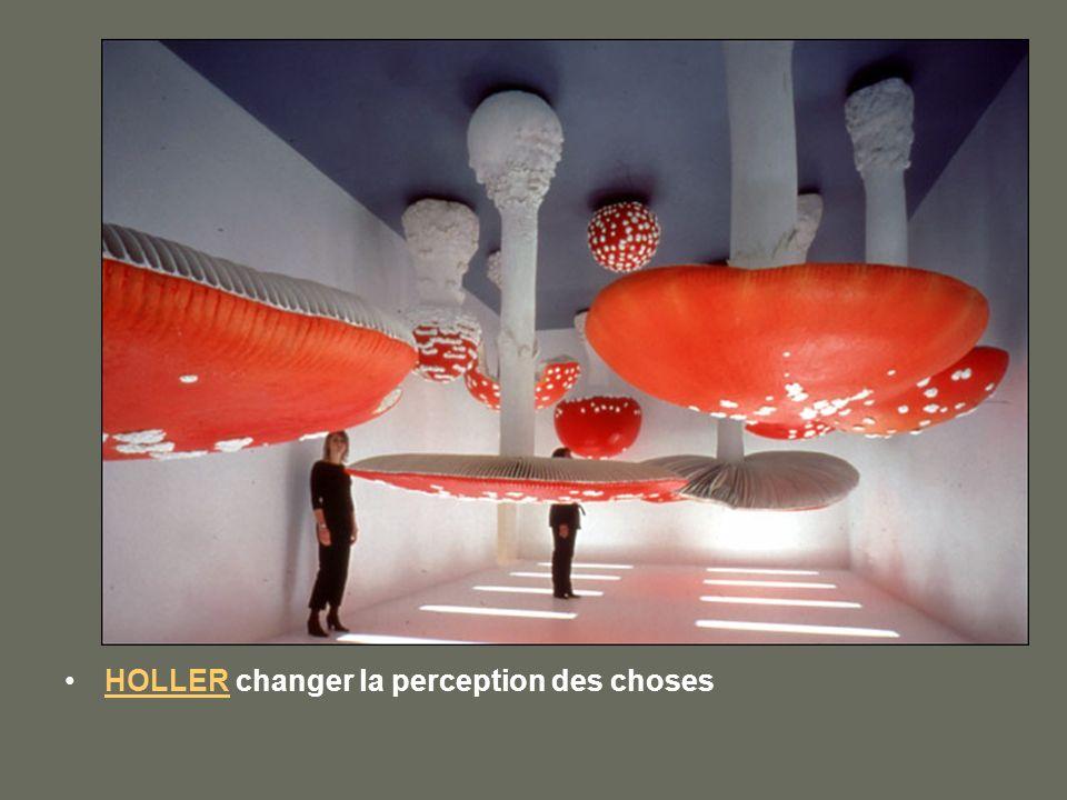 HOLLER changer la perception des chosesHOLLER