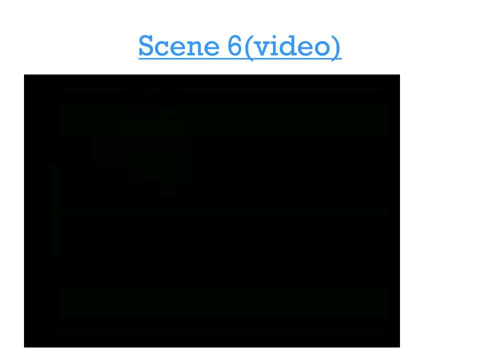 Scene 6(video)