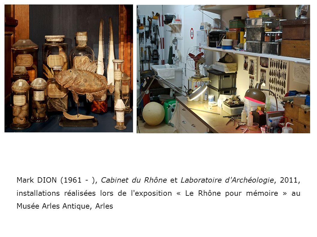 Mark DION (1961 - ), Cabinet du Rhône et Laboratoire d'Archéologie, 2011, installations réalisées lors de l'exposition « Le Rhône pour mémoire » au Mu