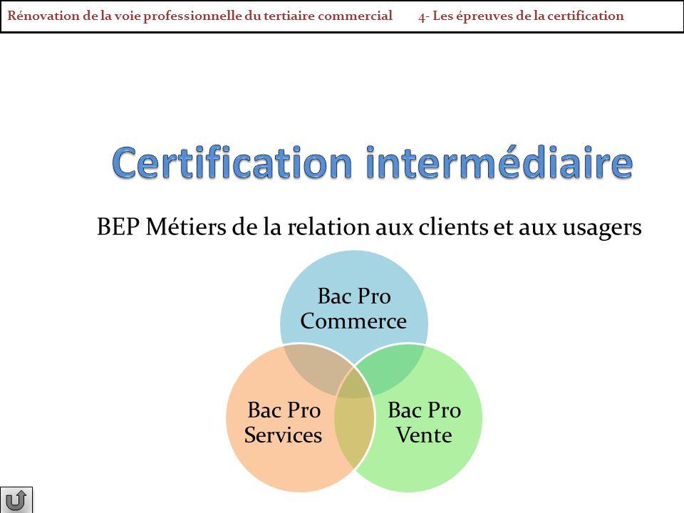 BEP Métiers de la relation aux clients et aux usagers Bac Pro Commerce Bac Pro Vente Bac Pro Services Rénovation de la voie professionnelle du tertiai