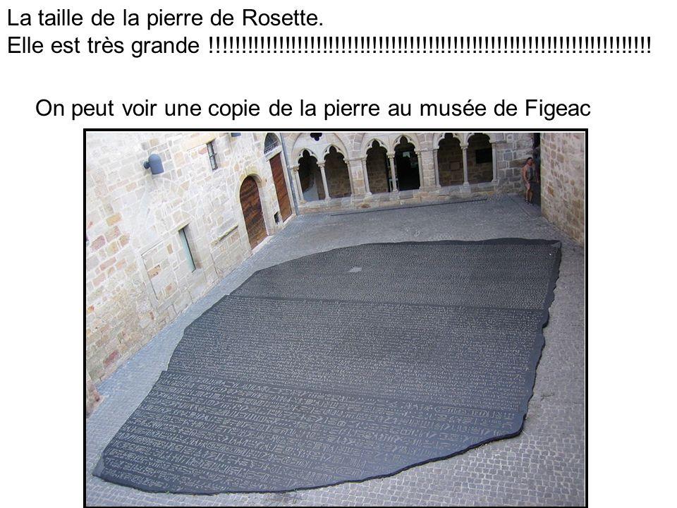 La taille de la pierre de Rosette. Elle est très grande !!!!!!!!!!!!!!!!!!!!!!!!!!!!!!!!!!!!!!!!!!!!!!!!!!!!!!!!!!!!!!!!!!!!!!! On peut voir une copie
