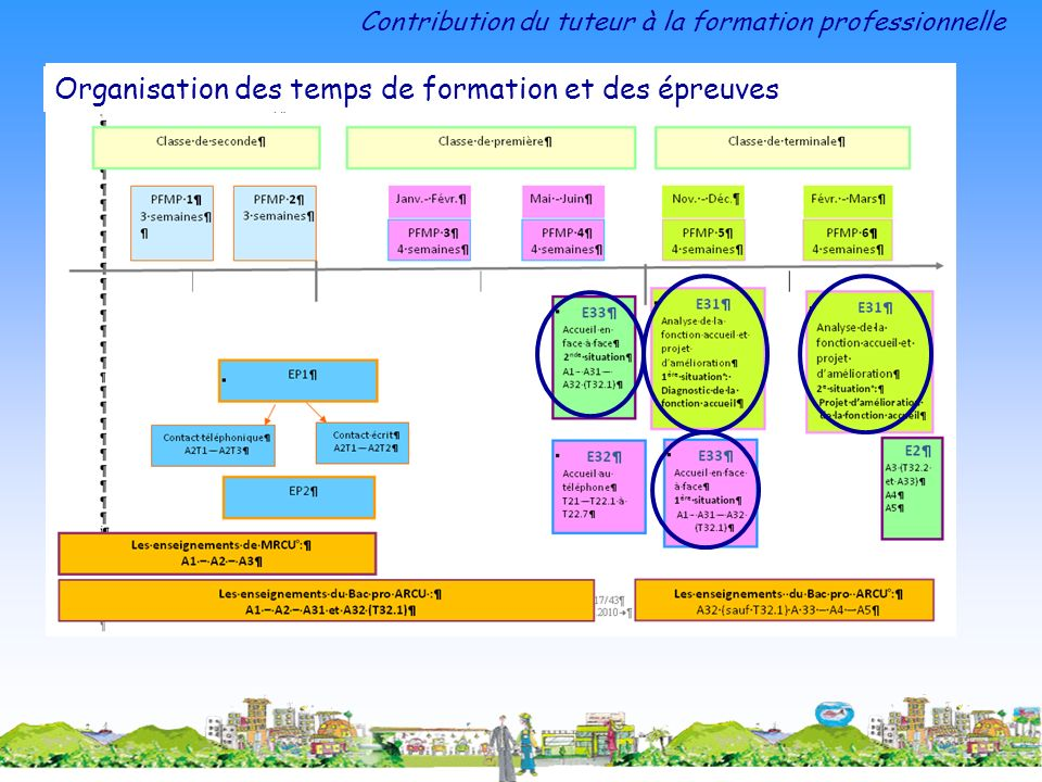Contribution du tuteur à la formation professionnelle Organisation des temps de formation et des épreuves
