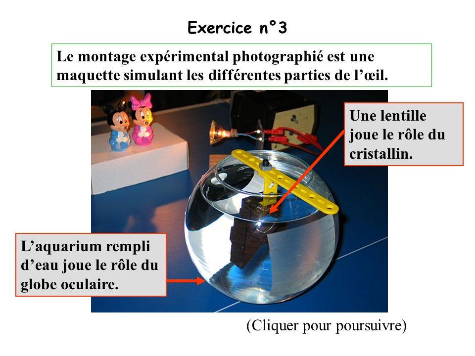 Exercice n°3 Face avantFace arrière (Cliquer pour poursuivre)