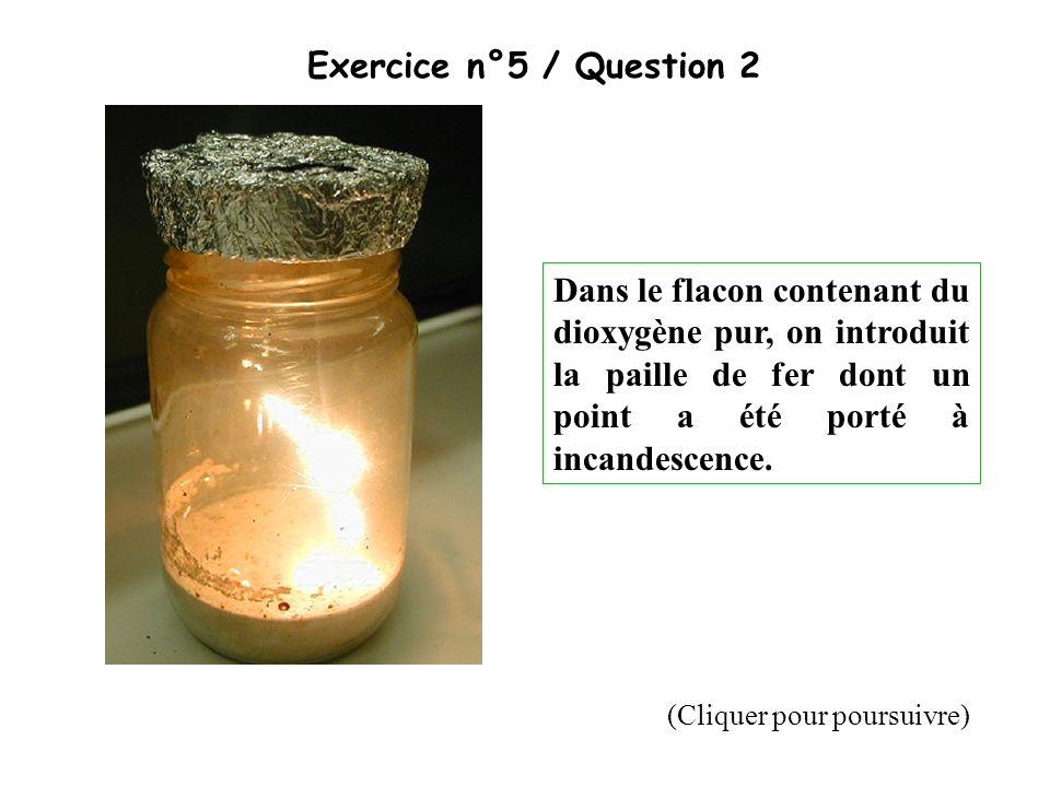 Exercice n°5 / Question 2 Dans le flacon contenant du dioxygène pur, on introduit la paille de fer dont un point a été porté à incandescence. (Cliquer