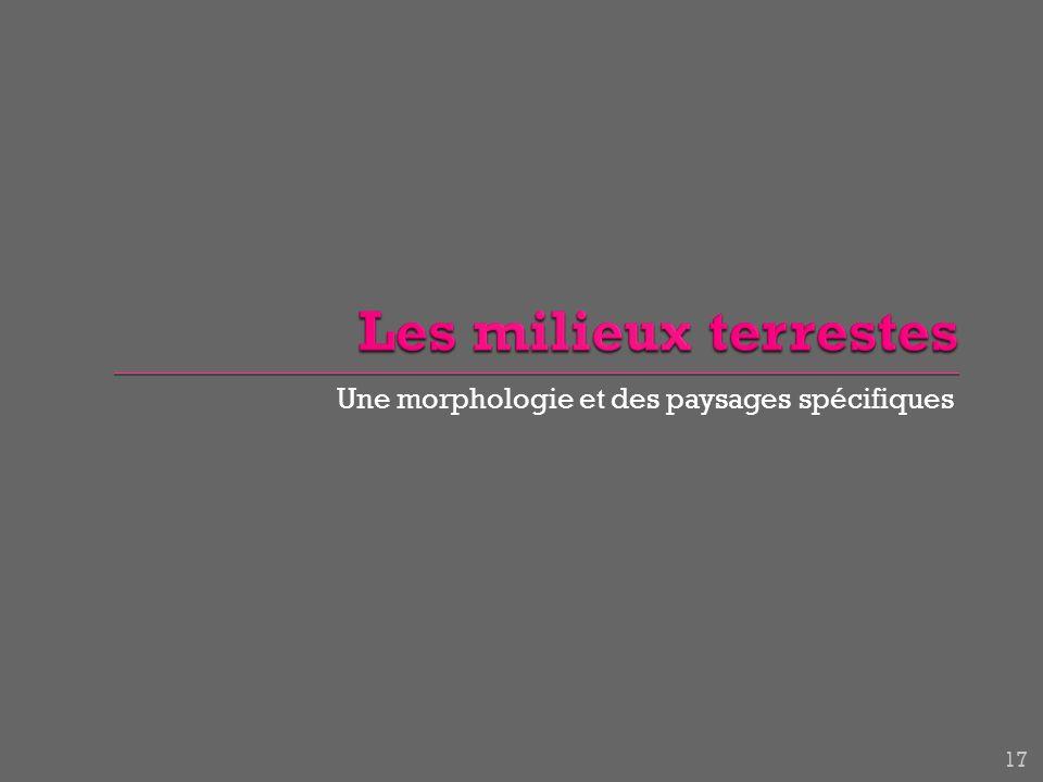 Une morphologie et des paysages spécifiques 17