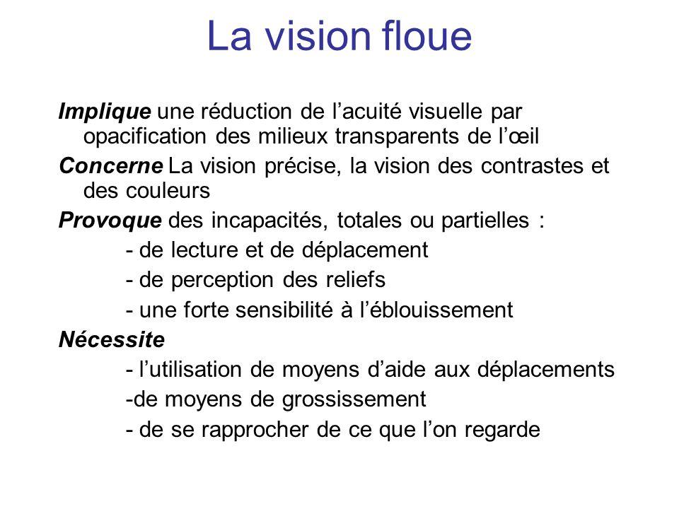 La vision floue Implique une réduction de lacuité visuelle par opacification des milieux transparents de lœil Concerne La vision précise, la vision de