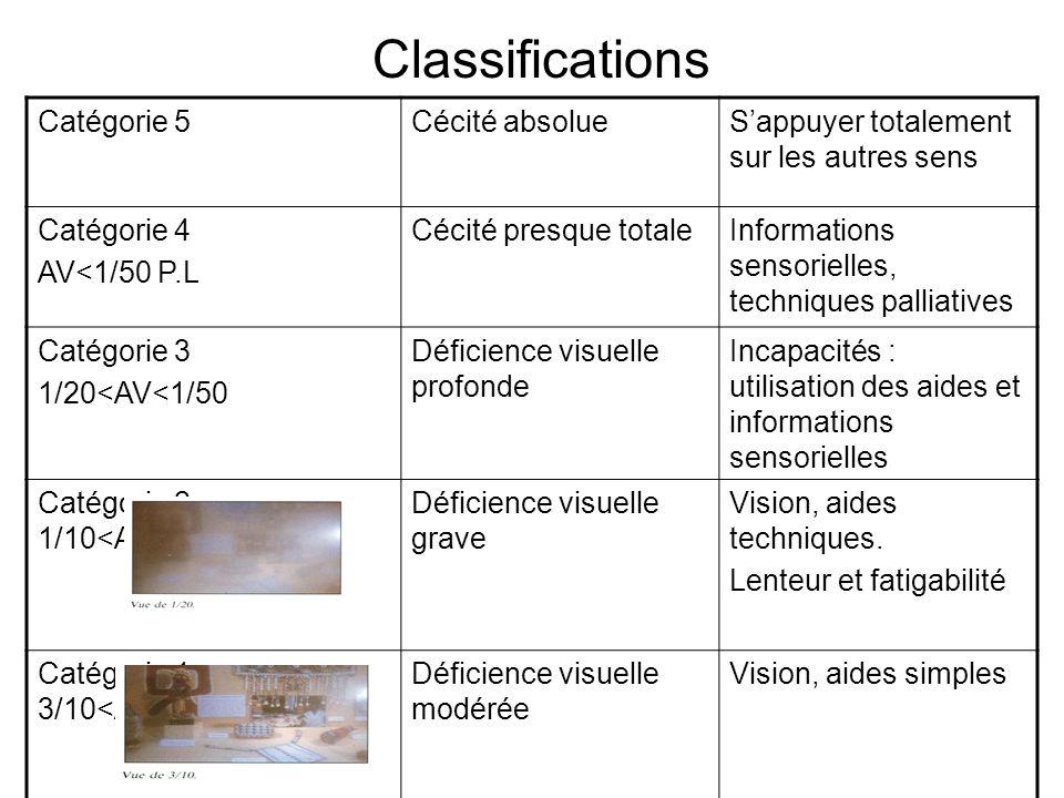 Classifications Catégorie 5Cécité absolueSappuyer totalement sur les autres sens Catégorie 4 AV<1/50 P.L Cécité presque totaleInformations sensorielle