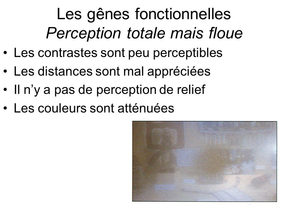 Les gênes fonctionnelles Perception totale mais floue Les contrastes sont peu perceptibles Les distances sont mal appréciées Il ny a pas de perception