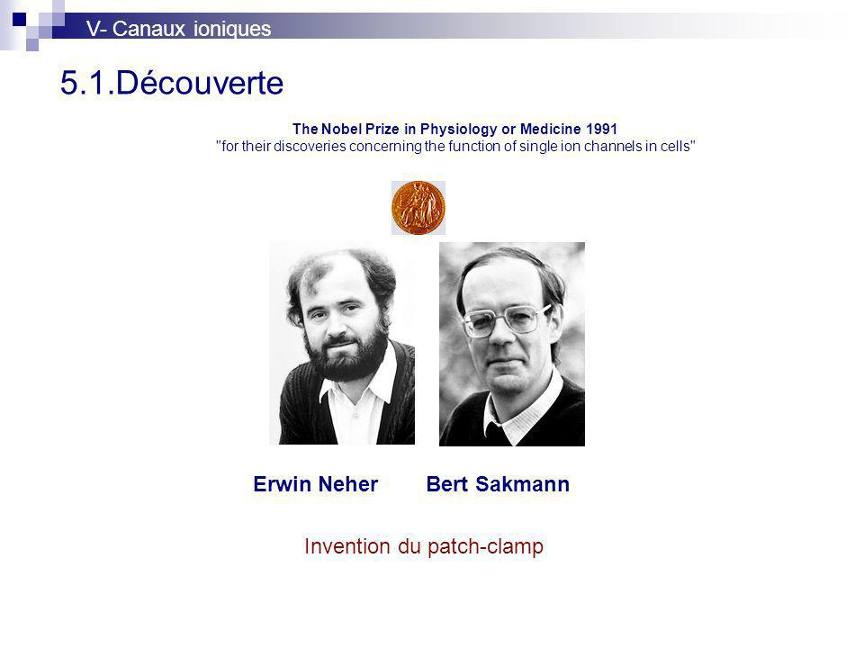 5.1.Découverte The Nobel Prize in Physiology or Medicine 1991 for their discoveries concerning the function of single ion channels in cells Erwin NeherBert Sakmann Invention du patch-clamp V- Canaux ioniques