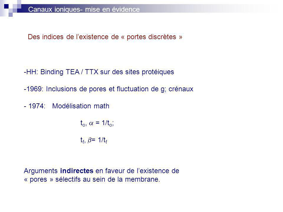 Canaux ioniques- mise en évidence -HH: Binding TEA / TTX sur des sites protéiques -1969: Inclusions de pores et fluctuation de g; crénaux - 1974:Modélisation math t o, = 1/t o ; t f, = 1/t f Arguments indirectes en faveur de lexistence de « pores » sélectifs au sein de la membrane.