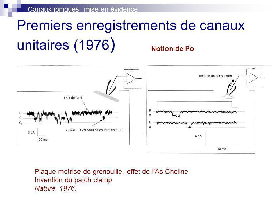 Premiers enregistrements de canaux unitaires (1976 ) Plaque motrice de grenouille, effet de lAc Choline Invention du patch clamp Nature, 1976. Canaux