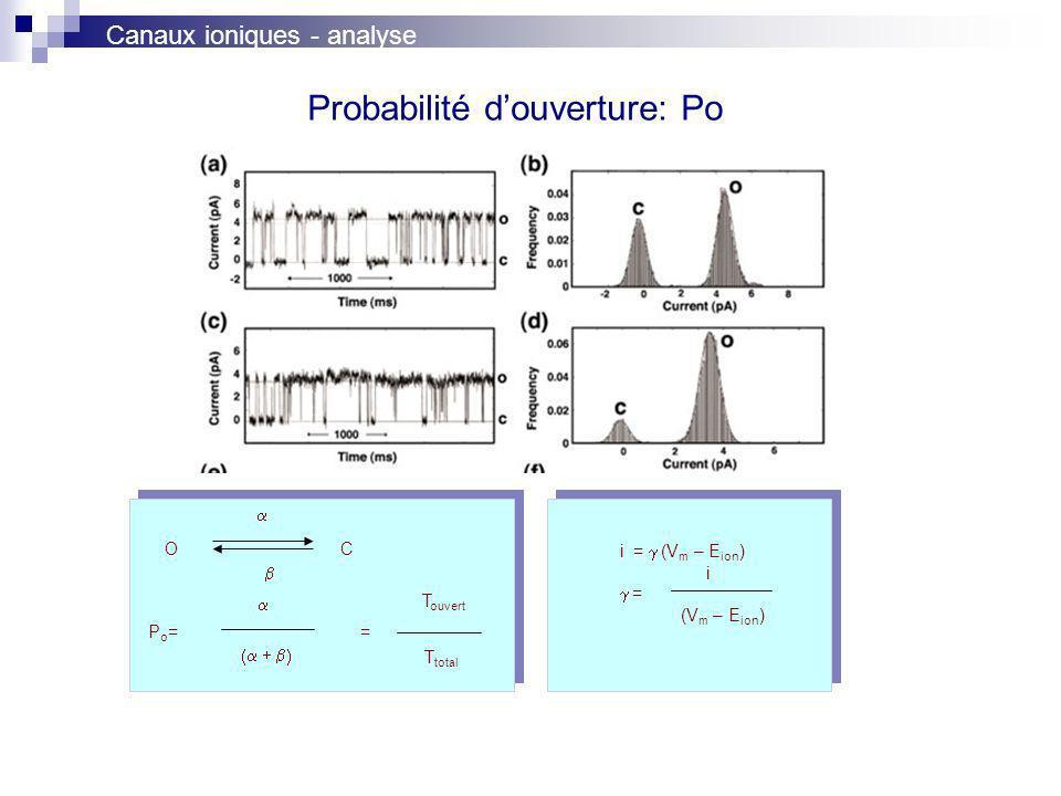 Probabilité douverture: Po P o = = OC i = (V m – E ion ) = i (V m – E ion ) T ouvert T total Canaux ioniques - analyse