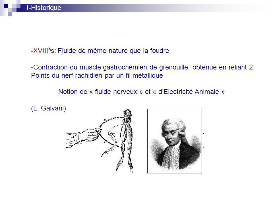 I-Historique -XVIII è s: Fluide de même nature que la foudre -Contraction du muscle gastrocnémien de grenouille: obtenue en reliant 2 Points du nerf rachidien par un fil métallique Notion de « fluide nerveux » et « dElectricité Animale » (L.