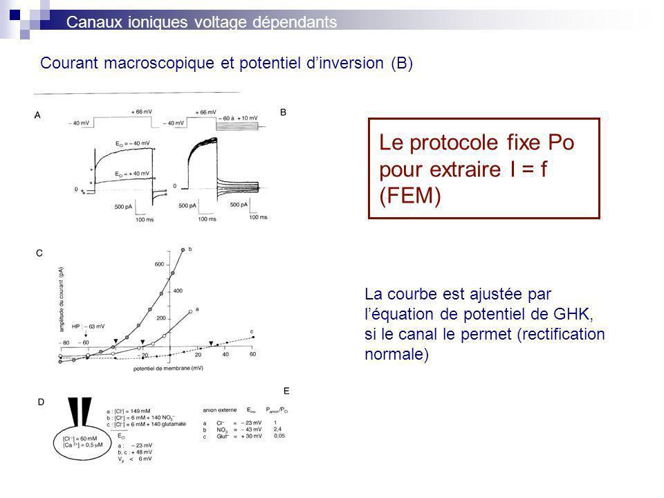 Courant macroscopique et potentiel dinversion (B) Canaux ioniques voltage dépendants Le protocole fixe Po pour extraire I = f (FEM) La courbe est ajustée par léquation de potentiel de GHK, si le canal le permet (rectification normale)