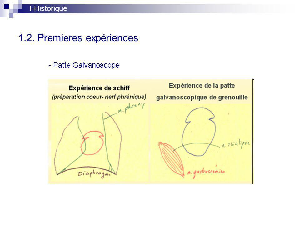 1.2. Premieres expériences I-Historique - Patte Galvanoscope