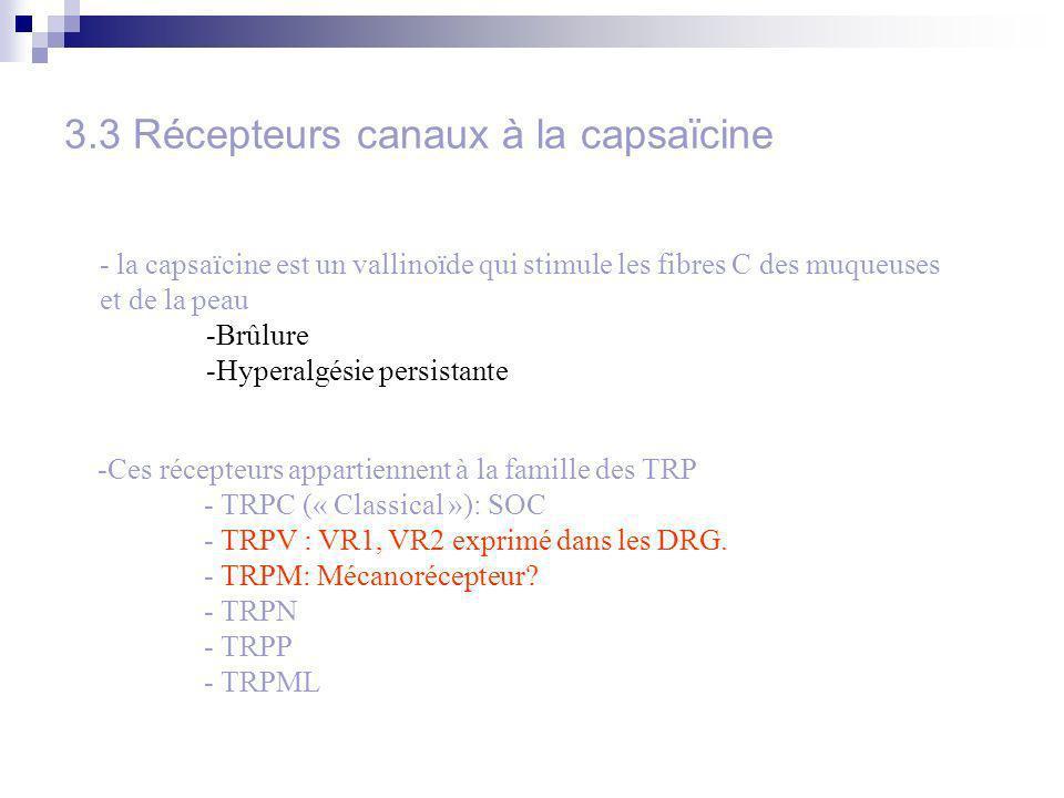 3.3 Récepteurs canaux à la capsaïcine - la capsaïcine est un vallinoïde qui stimule les fibres C des muqueuses et de la peau -Brûlure -Hyperalgésie persistante -Ces récepteurs appartiennent à la famille des TRP - TRPC (« Classical »): SOC - TRPV : VR1, VR2 exprimé dans les DRG.
