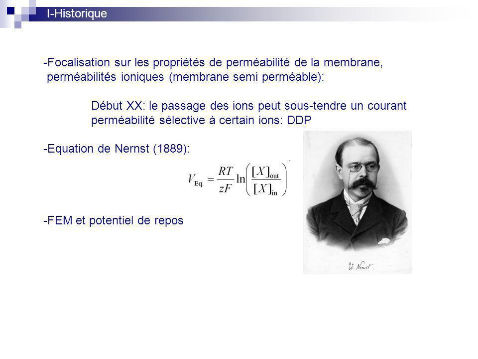 I-Historique -Focalisation sur les propriétés de perméabilité de la membrane, perméabilités ioniques (membrane semi perméable): Début XX: le passage des ions peut sous-tendre un courant perméabilité sélective à certain ions: DDP -Equation de Nernst (1889): -FEM et potentiel de repos