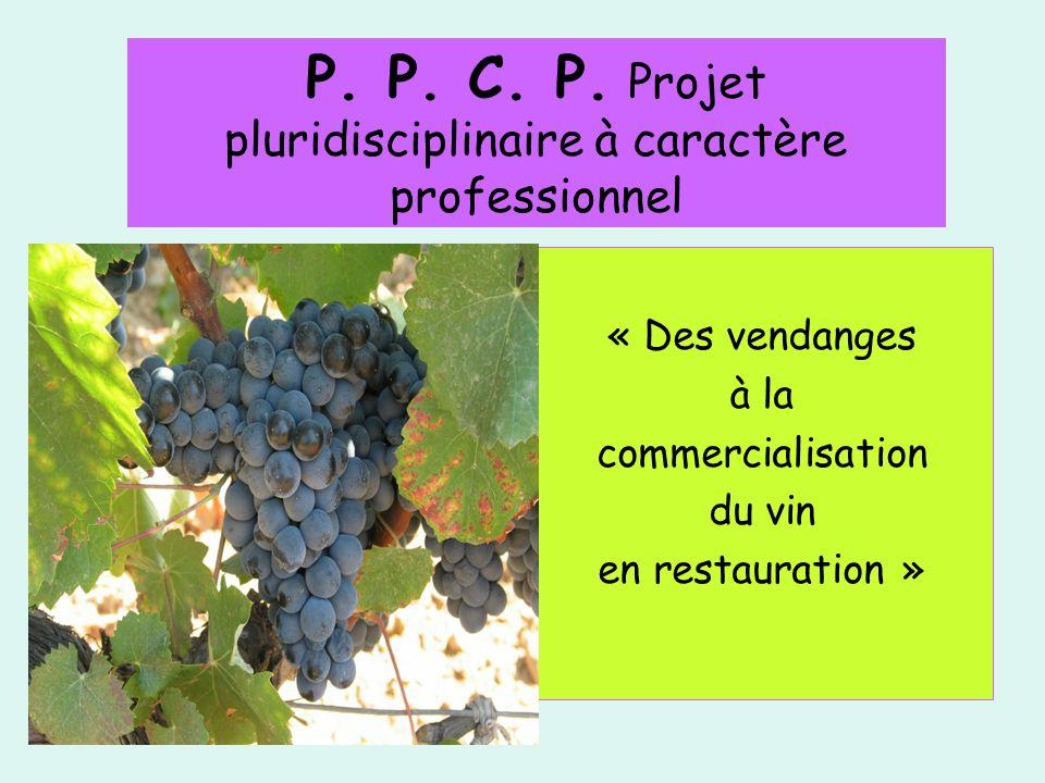 P. P. C. P. Projet pluridisciplinaire à caractère professionnel « Des vendanges à la commercialisation du vin en restauration »
