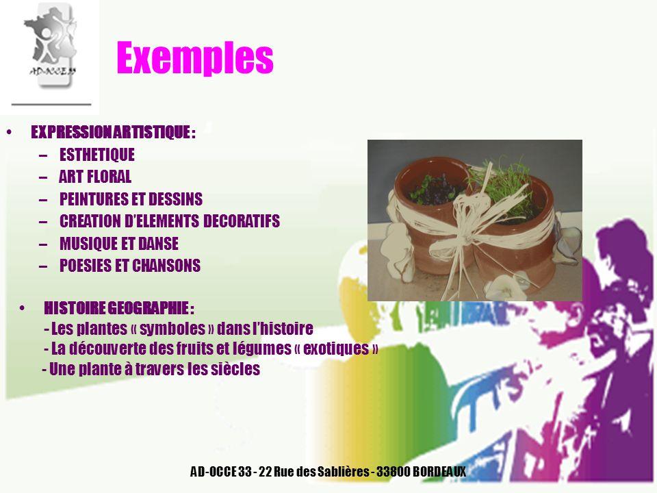 AD-OCCE 33 - 22 Rue des Sablières - 33800 BORDEAUX Exemples EXPRESSION ARTISTIQUE : –ESTHETIQUE –ART FLORAL –PEINTURES ET DESSINS –CREATION DELEMENTS
