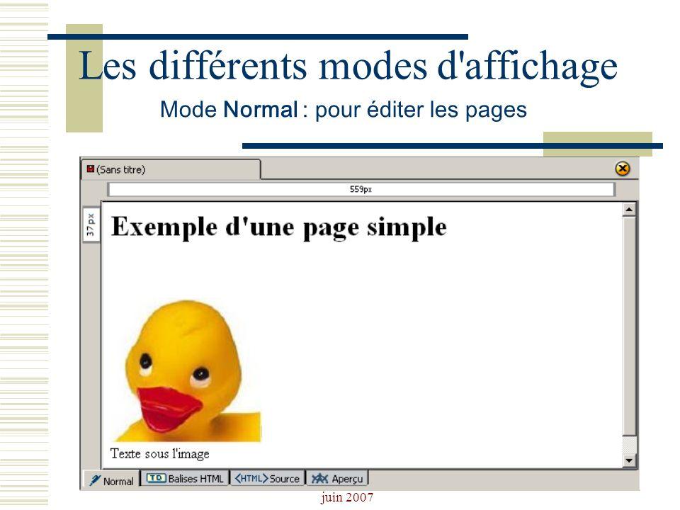 Josiane Ducournau CDDP Portail CDI juin 2007 Les différents modes d'affichage Mode Normal : pour éditer les pages