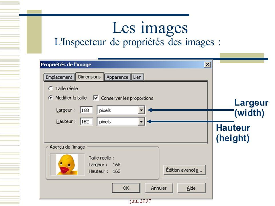 Josiane Ducournau CDDP Portail CDI juin 2007 Les images L'Inspecteur de propriétés des images : Largeur (width) Hauteur (height)
