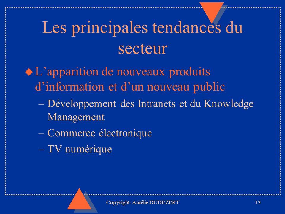 Copyright: Aurélie DUDEZERT13 Les principales tendances du secteur u Lapparition de nouveaux produits dinformation et dun nouveau public –Développement des Intranets et du Knowledge Management –Commerce électronique –TV numérique
