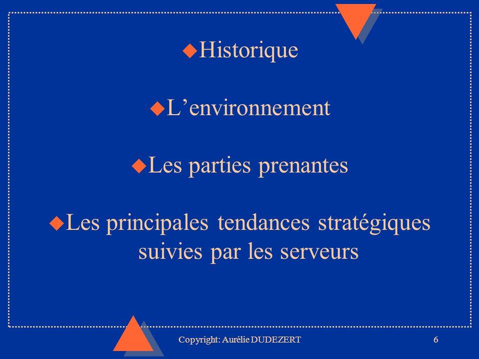 Copyright: Aurélie DUDEZERT27 POUR CONCLURE... lunivers des serveurs