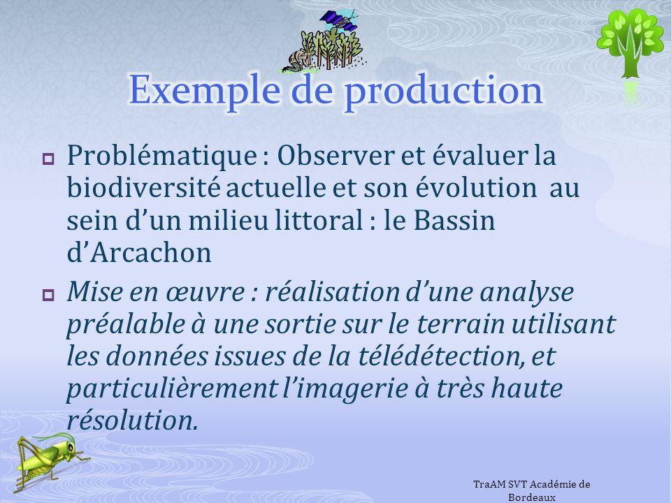 Problématique : Observer et évaluer la biodiversité actuelle et son évolution au sein dun milieu littoral : le Bassin dArcachon Mise en œuvre : réalis