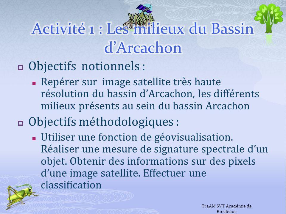Objectifs notionnels : Repérer sur image satellite très haute résolution du bassin dArcachon, les différents milieux présents au sein du bassin Arcach