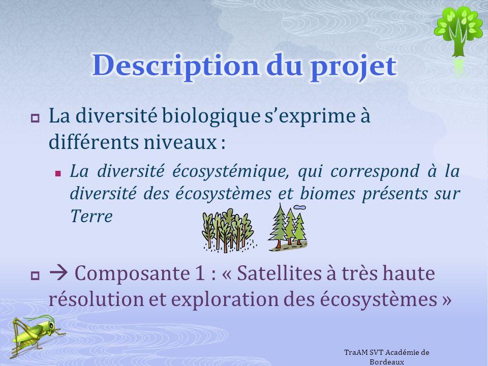 La diversité biologique sexprime à différents niveaux : La diversité spécifique correspond à la diversité des espèces au sein dun écosystème Composante 2a : « Approche de la biodiversité des insectes dans la région Aquitaine » Composante 2b : « Approche de la biodiversité végétale de quelques écosystèmes aquitains » « Approche de la biodiversité végétale de quelques écosystèmes aquitains » TraAM SVT Académie de Bordeaux