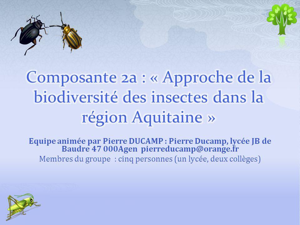 Equipe animée par Pierre DUCAMP : Pierre Ducamp, lycée JB de Baudre 47 000Agen pierreducamp@orange.fr Membres du groupe : cinq personnes (un lycée, de