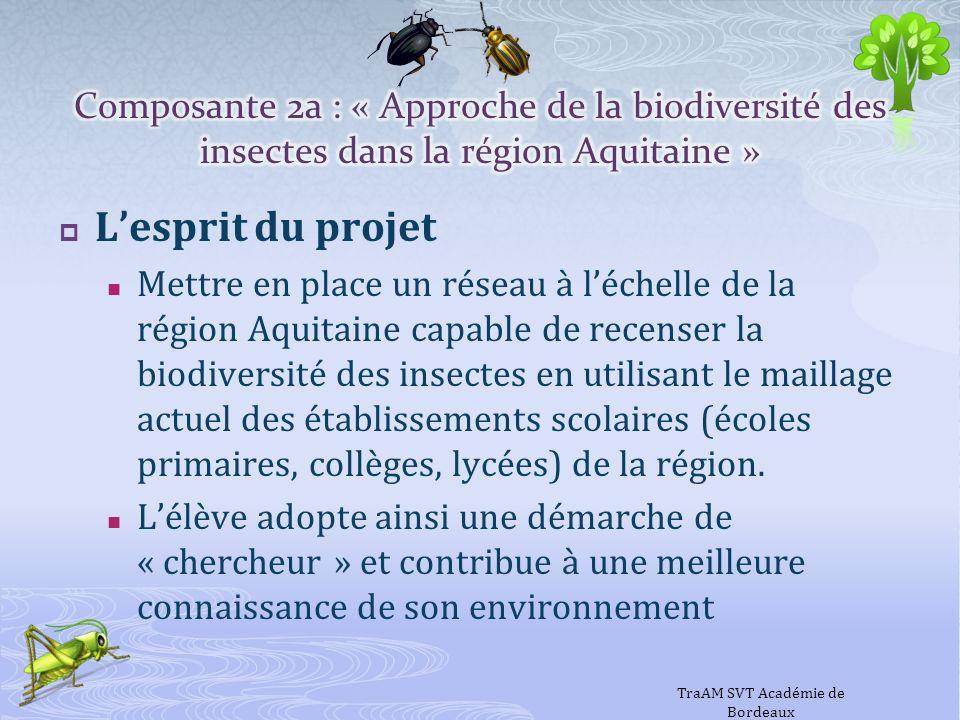 Lesprit du projet Mettre en place un réseau à léchelle de la région Aquitaine capable de recenser la biodiversité des insectes en utilisant le maillag