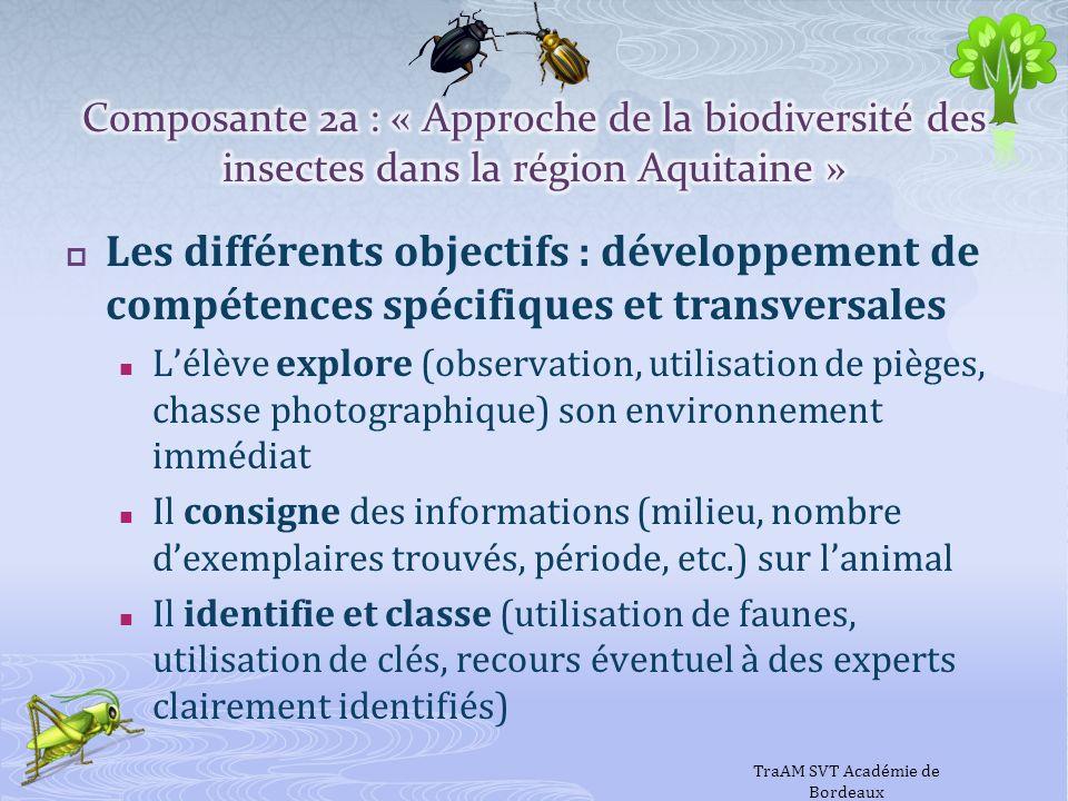 Les différents objectifs : développement de compétences spécifiques et transversales Lélève explore (observation, utilisation de pièges, chasse photog