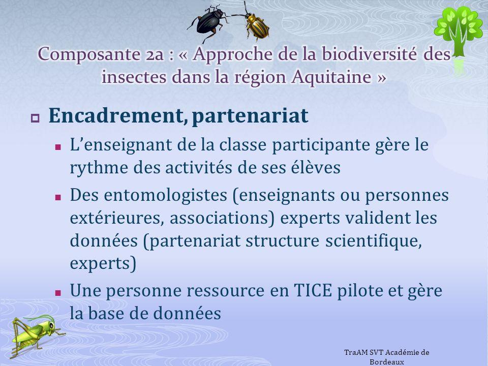 Encadrement, partenariat Lenseignant de la classe participante gère le rythme des activités de ses élèves Des entomologistes (enseignants ou personnes