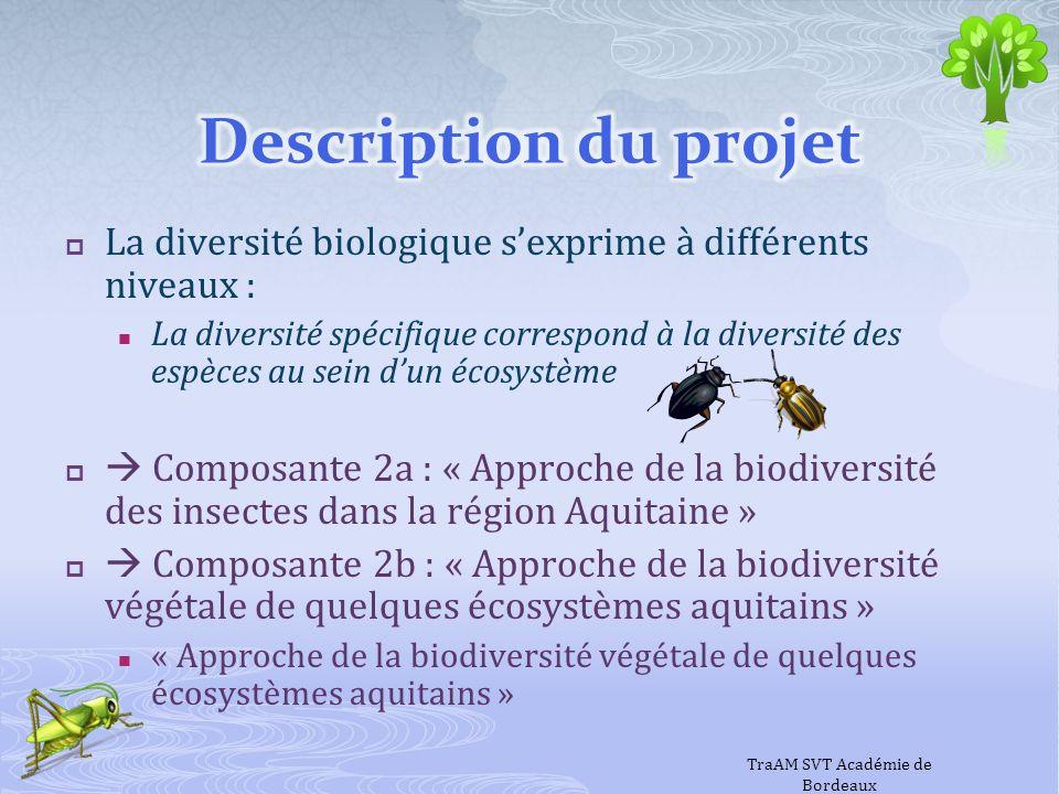 La diversité biologique sexprime à différents niveaux : La diversité spécifique correspond à la diversité des espèces au sein dun écosystème Composant