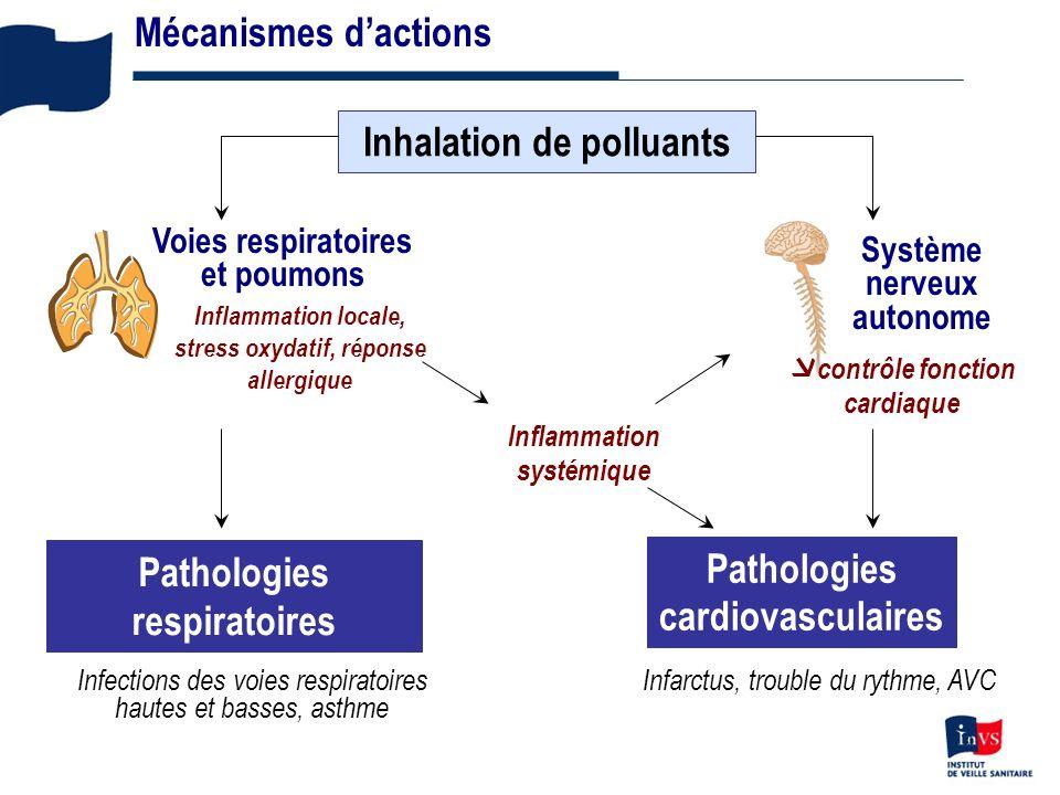 3 Mécanismes dactions Inhalation de polluants Inflammation systémique Pathologies respiratoires Système nerveux autonome contrôle fonction cardiaque Pathologies cardiovasculaires Voies respiratoires et poumons Inflammation locale, stress oxydatif, réponse allergique Infections des voies respiratoires hautes et basses, asthme Infarctus, trouble du rythme, AVC