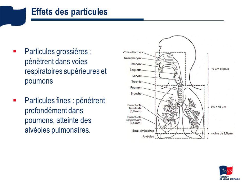 4 Effets des particules Particules grossières : pénètrent dans voies respiratoires supérieures et poumons Particules fines : pénètrent profondément da