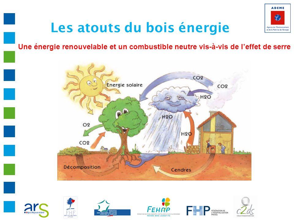 Les atouts du bois énergie Une énergie renouvelable et un combustible neutre vis-à-vis de leffet de serre